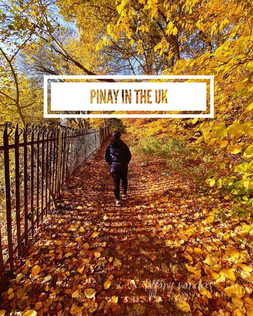 Pinay in the UK: How I Resumed Paying to SSS and Pag-IBIG